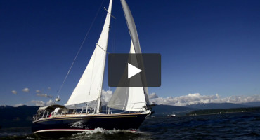 Indemnity – A truly gorgeous Sabre 42